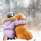 10 tips to go to the snow with your dog